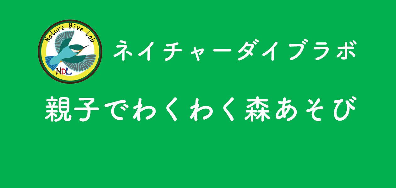 親子でわくわく森あそび【6月】